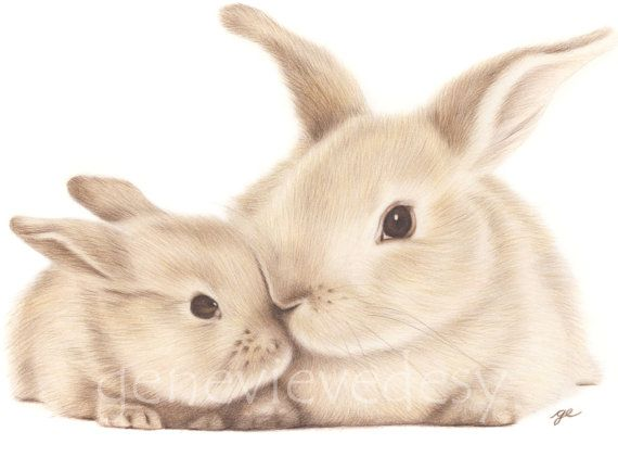 Bunny Art Print  Mother and Baby Bunny  Mommy and me print