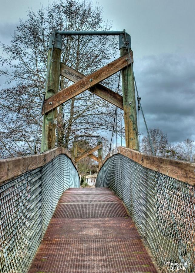 Suspension #bridge in #Langley, BC.
