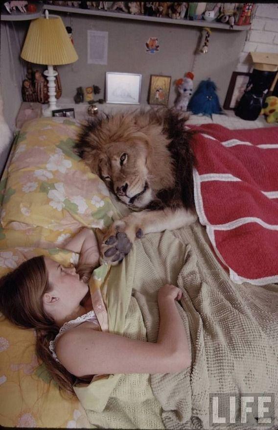 TIPPI HEDREN AND LION