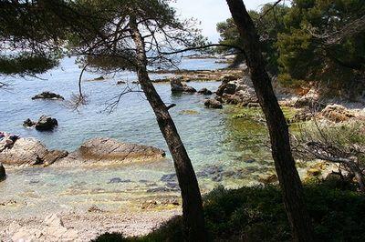 iles de lerins sainte marguerite, criques et sentier littoral à cannes