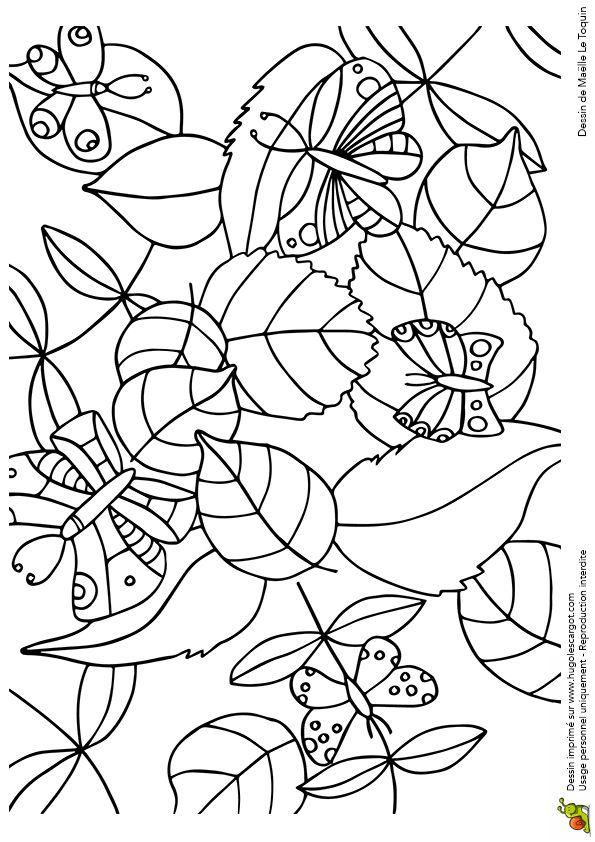 Coloriage cache cache feuilles papillons sur Hugolescargot.com - Hugolescargot.com