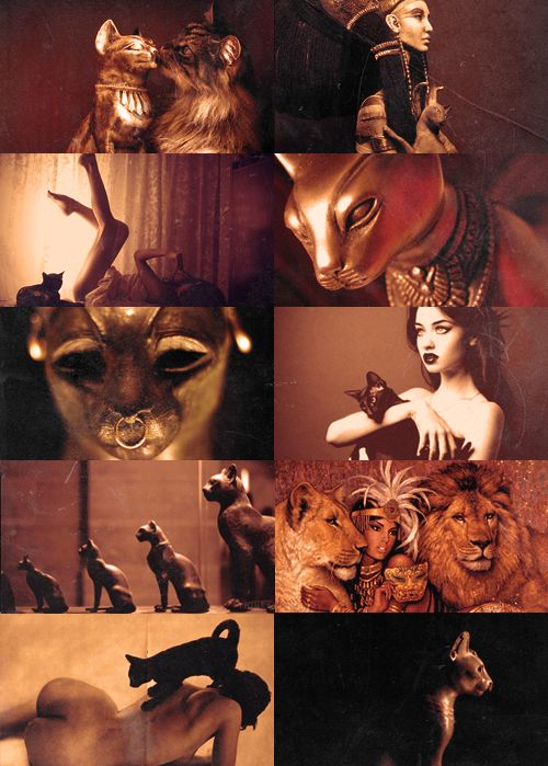 blackbucky:  Mythology Meme    Favorite Goddesses [1/10]    Bastest  To those who were in her favor, she gave great blessings, but her wrath was legendary and she was sometimes listed as one of Ra's avenging deities who punish the sinful and the enemies of Egypt. This is of course in keeping with her totem animal, the cat. Cats were sacred to Bast, and to harm one was deemed a great transgression.{x}