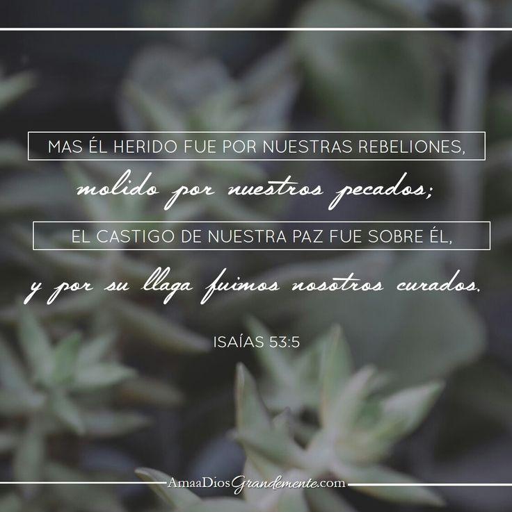 Versículo a memorizar semana 6 #AmaaDiosgrandemente #Mujersabia #Probervios #Estudiobiblicoenlinea #ADGenespañol #Dios #Devocionalparamujeres