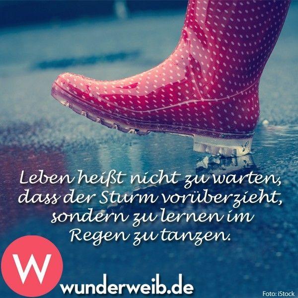 Leben heißt nicht zu warten, dass der Sturm vorüberzieht, sondern zu lernen im Regen zu tanzen.