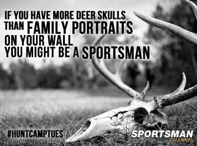 Traditional mounts, Euro's, turkey fans, and my assorted coon hunting memorabilia/trophies...yep, that is definitely us. I don't think there is a picture in our house of us together that doesn't have a dog and/or game killed in it too!