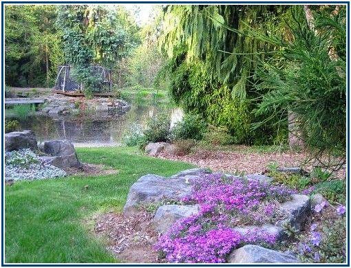 354 best Home Landscape Ideas images on Pinterest Ideas