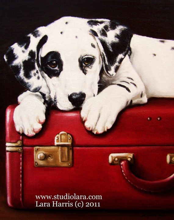Dalmation:  Coach Dogs, Dogs Paintings, Red, Pet Portraits, Vintage Suitca, Dalmatians Puppies,  Carriage Dogs, Dalmatians Dogs, Animal