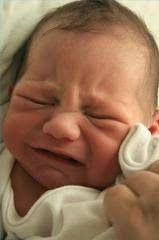 The Health Newbie: Fussy Baby! Personality or Pain? nicole Christensen