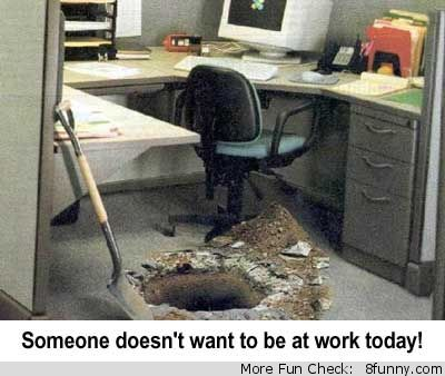 1000 images about funny work on pinterest office prank offices and