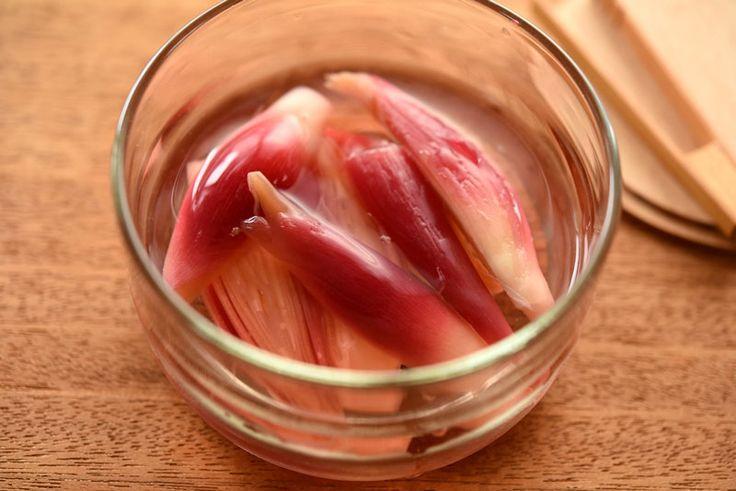 いちばん丁寧な和食レシピサイト、白ごはん.comの『みょうがの甘酢漬けの作り方』を紹介するレシピページです。甘酢のレシピから、みょうがの下ごしらえ・ゆで方までを詳しく写真付きで掲載しています。さっぱり食べやすいみょうがの甘酢漬けは、食欲のない暑い時期に献立に取り入れたいものです。