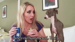 Bro.: Jenna Marbles Funny, Thoughts Catalog, Hilarious Relate, Jenna Marbles3, Hilarious Things, Jenna Marbles Girls, Jennamarbl, Marbles Quotes, 45 Hilarious