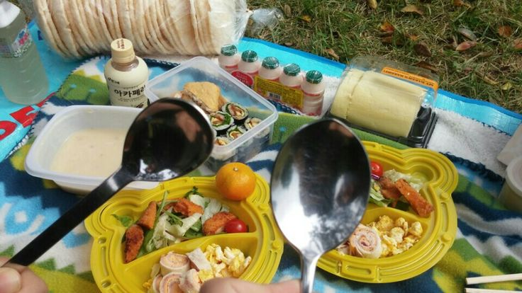 pack lunch 도시락들고 동물원으로 소풍
