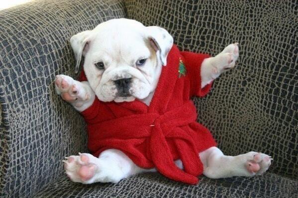 Got mah new robe on.