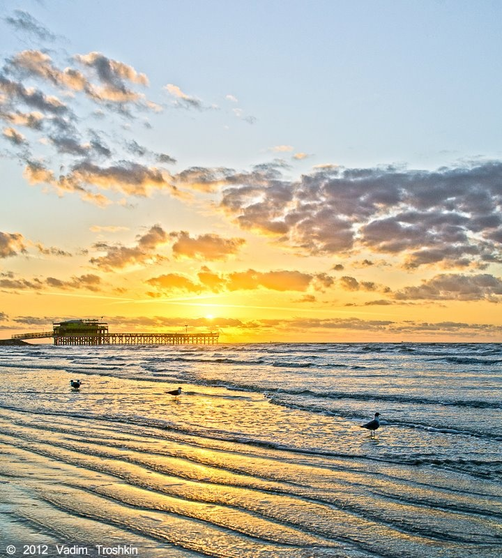 Gulf Of Mexico Vacation Spots In Texas: 58 Best Images About Fun Things To Do In Texas On