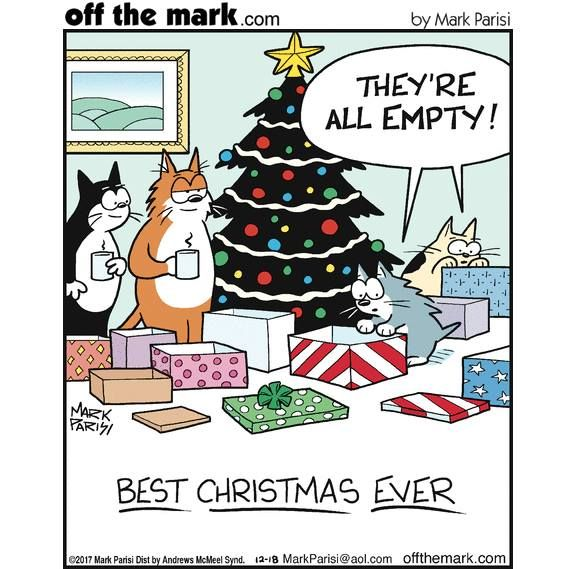 Pin By Tiffany Rose Princess On Off The Mark Christmas Cats Cat Jokes Funny Cats