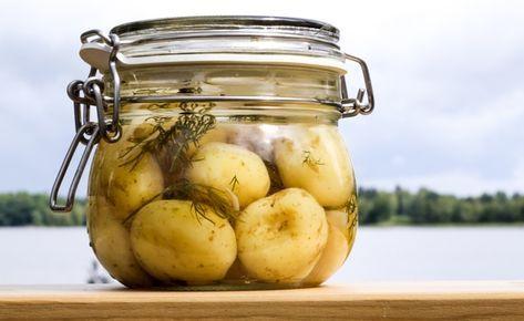 Vänta nu, inlagd potatis – kan det vara gott? Vad som kan uppfattas som en övernördig hipstergrej av somliga är faktiskt något jag rekommenderar alla att testa. För att inlagd färskpotatis är…