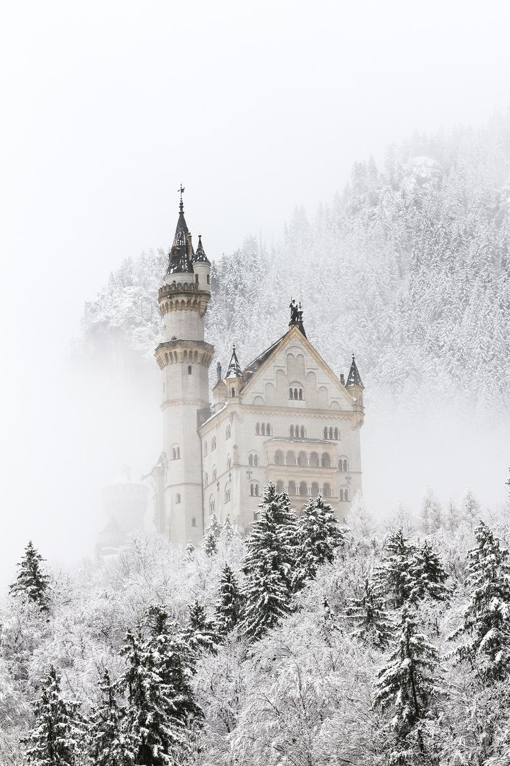 neuschwanstein in snow - neuschwanstein castle covered with snow