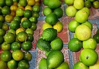 Links limoenen, in het midden citroenen en rechts  De geneeskracht van sinaasappels