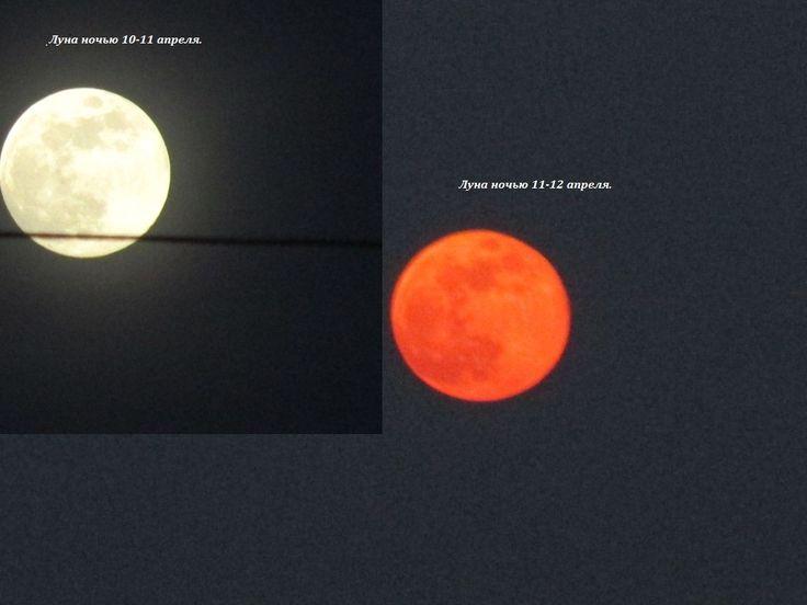 """Среда 12 апреля .  А я две ночи подряд луну фотографировала, и вот какие  перепады """"настроения"""" были у луны. (52 радости моей деревенской жизни) #52радости"""