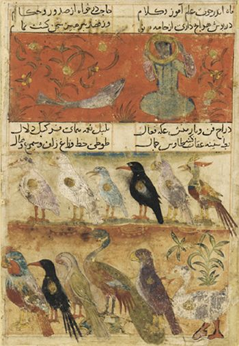 "Folio from a Mu'nis al-Abrar fi Deqa'iq al-Ash'ar. Top: The Moon and Fish- ""With the moon in Pisces, study learning and theology,/Make requests from ministers and judges,/Wear whatever new clothes you possess,/Abstain from bleeding. The tale is ended."" Bottom: ""Wiles of francolin, spirit of hawk, quickness of magpie,/Music of nightingale, splendor of huma, glance of partridge,/Breast of duck, wrath of eagle, beauty of peacock,/Cheek-down like parrot, hair like raven, attainable as simurgh."""