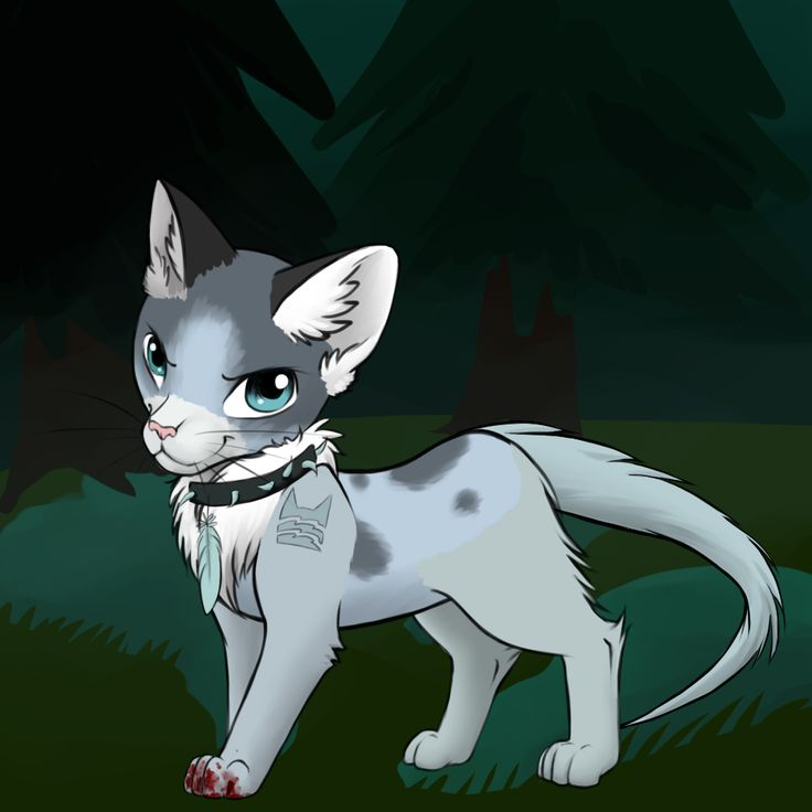 Warrior Cats Kit To Leader Bloodclan: 17 Best Images About Lps Customs On Pinterest
