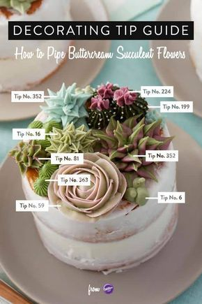 You are going to love this Succulent Cupcakes Tutorial that shows you how to pipe gorgeous buttercream flowers. Watch the video now.