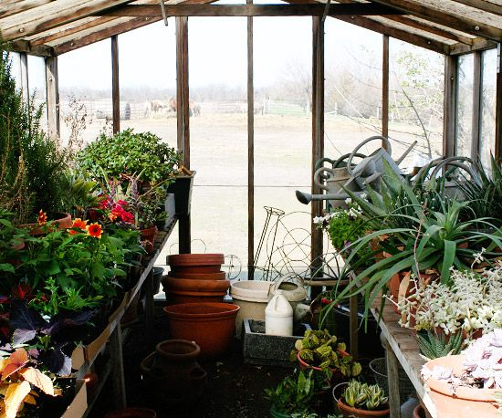 45 best images about greenhouse on pinterest greenhouses for Better homes and gardens greenhouse