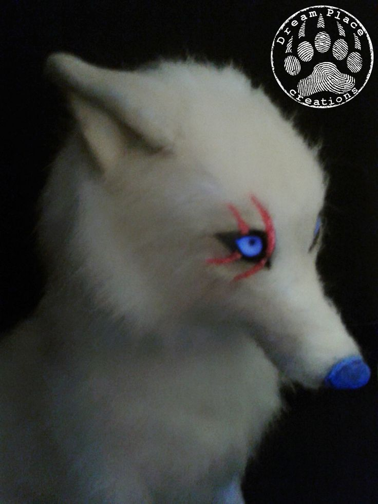 Fantasy creature - arctic wolf - handmade ooak #fantasy #creature #wolf #poseable