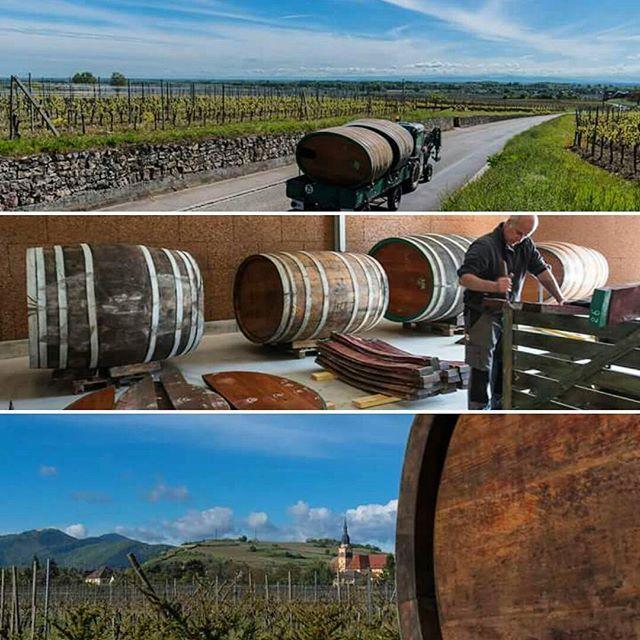 Aujourd'hui déménagement des foudres en bois jusqu'à notre nouveau chai. #alsace #vins #wine #bio #domainedelenvol #drinkalsace    Vins Bio d'Alsace - Domaine de l'Envol - Organic Wine