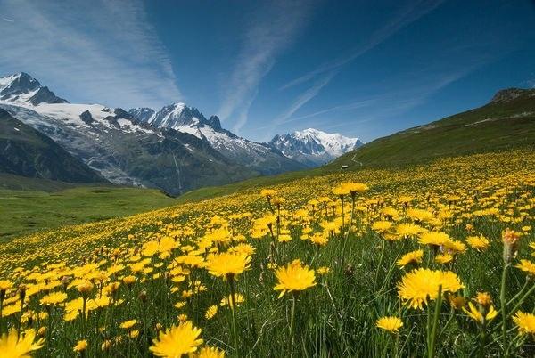 Monte Bianco, Valle d'Aosta,Rodano-Alpi - ITALIA, FRANCIA