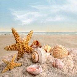 Cuadro estrellas de mar y caracolas.  CUADROS BLANGAR  Bonitos cuadros para baños a precios económicos