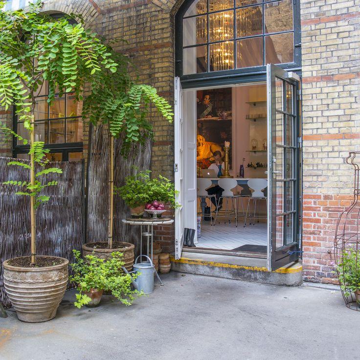 Royal Smushi Cafe - backdoor - courtyard - plants