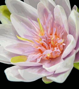 Natural Touch Flowers Lavender Pink Lotus Water Lily (Save 37%)