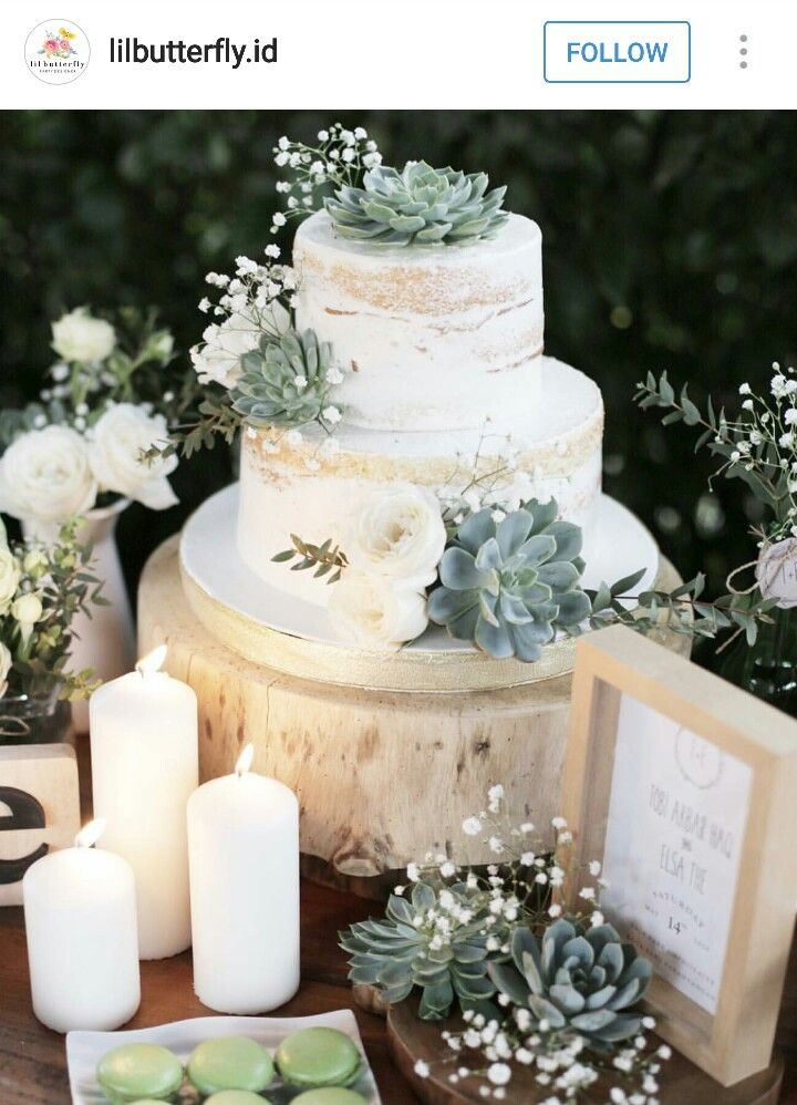 Naked Succulent cake