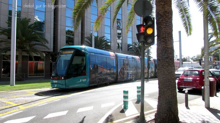 Трамвай в Санта-Крус-де-Тенерифе