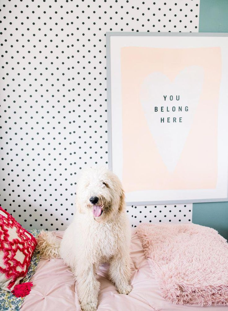 The Home Depot Decor Line In The New Kids Bedroom. Setting up a kids bedroom for…