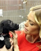 Denise Richards adopts Tara from rescues involved in finding homes for animals that went through Hurricane Sandy.   Go Denise