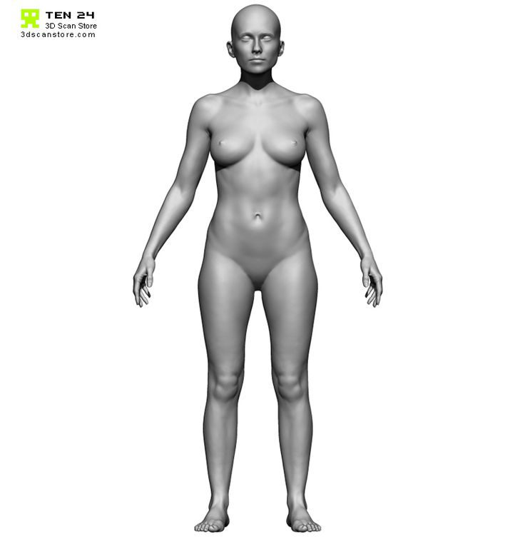 96 best Female Body Scan images on Pinterest | Anatomy reference ...