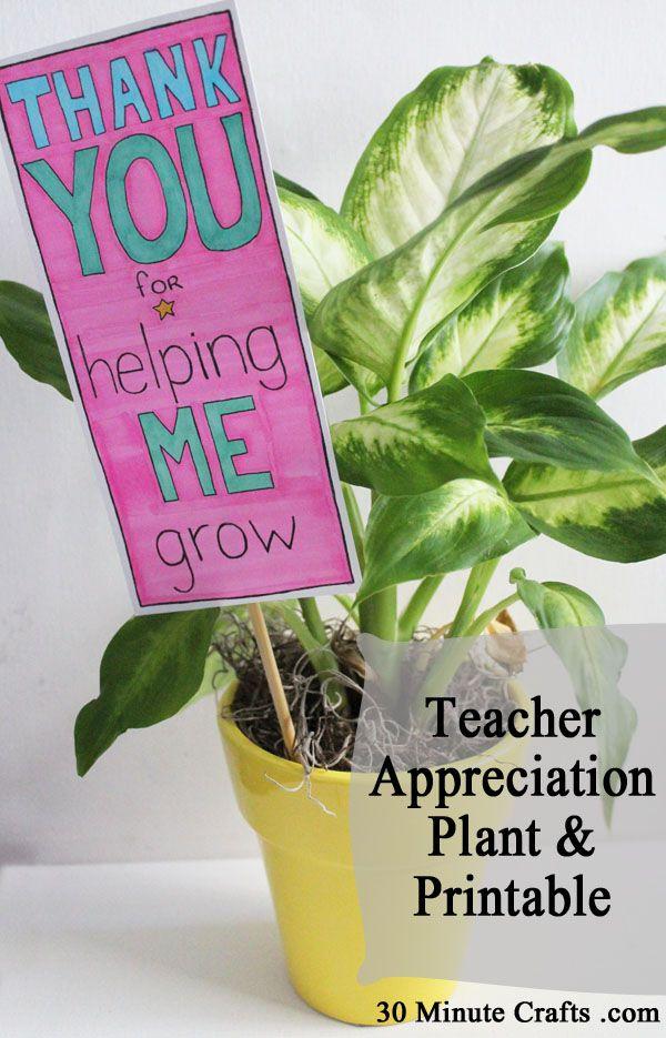Teacher Appreciation Plant and Printable