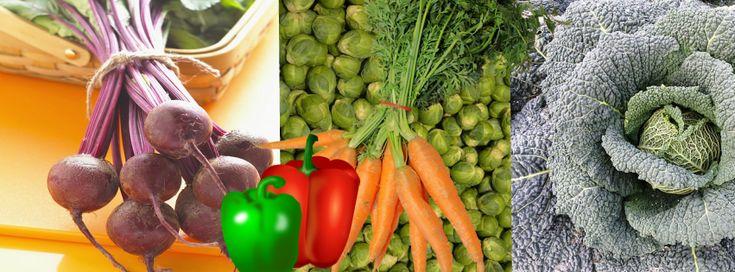 De 5 beste anti-veroudering groenten Je weet waarschijnlijk al hoe goed groenten zijn voor je gezondheid en welzijn.Maar wist je dat ze ook wonderen kunnen doen voor je huid en je zichtbaar jonger…