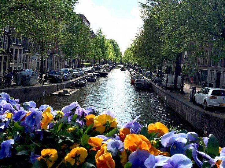 Slow Travel on a Sweet Sunday: Amsterdam