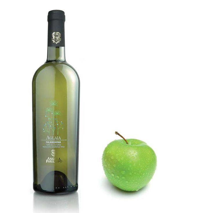 L'azienda Angela Posillipo, nasce nel 1972 con la volontà di valorizzare un #terroir per troppo tempo sconosciuto, favorevole a vitigni come il #PallagrelloBianco, il #PallagrelloNero e il #Casavecchia. La #cantina sotterranea, ricavata da un'antica cava di tufo, è al centro di #CastelCampagnano. #etichette, #labelling, #vino, #sannio, #packaging
