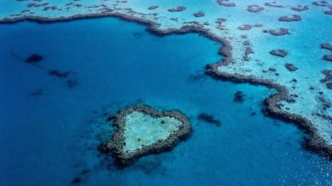 The Great Barrier Reef: planning the perfect trip - travel tips and articles - Lonely Planet