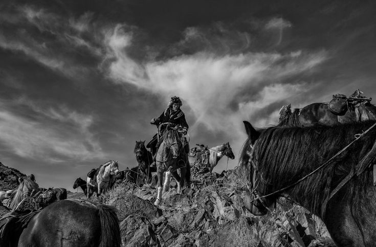 The Kazakhs living in Mongolia have a long history of riding horses. The nomadic…