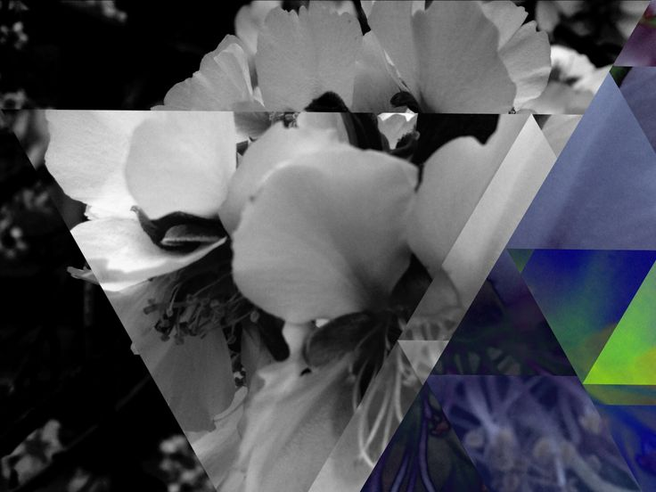 Made with Fragment #fragmentapp