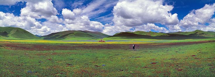 Photographies - Paysages - Matthieu Ricard - Photo - Landscape - Picture - Nature - Natural - Green - Vert