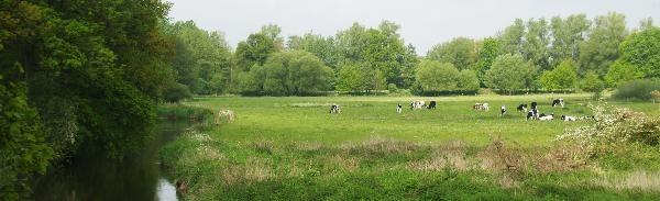 """De """"Greun'n Stett"""". Het meanderende riviertje de Dinkel maakt een scherpe bocht in het lutterzand, waardoor het, van bovenaf gezien, een soort groene staart vormt. Www.lutterzand.nl"""