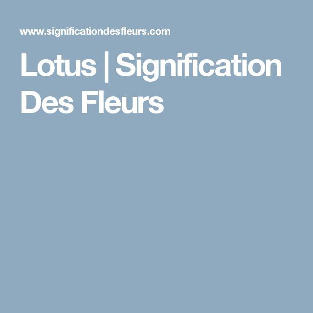 Lotus | Signification Des Fleurs