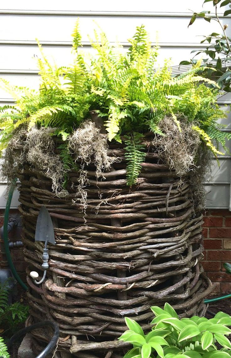 Disguise a Rain Barrel and Think Pink - Live Green