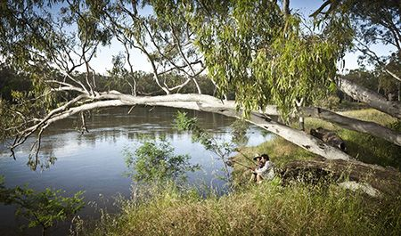 Friends fishing under a river red gum at Boomanoomana